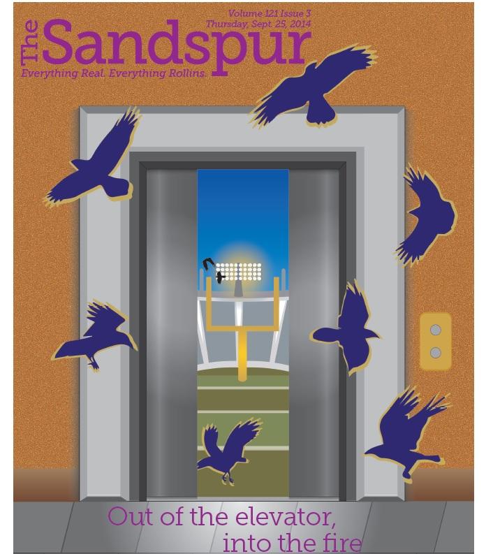 sandspur cover